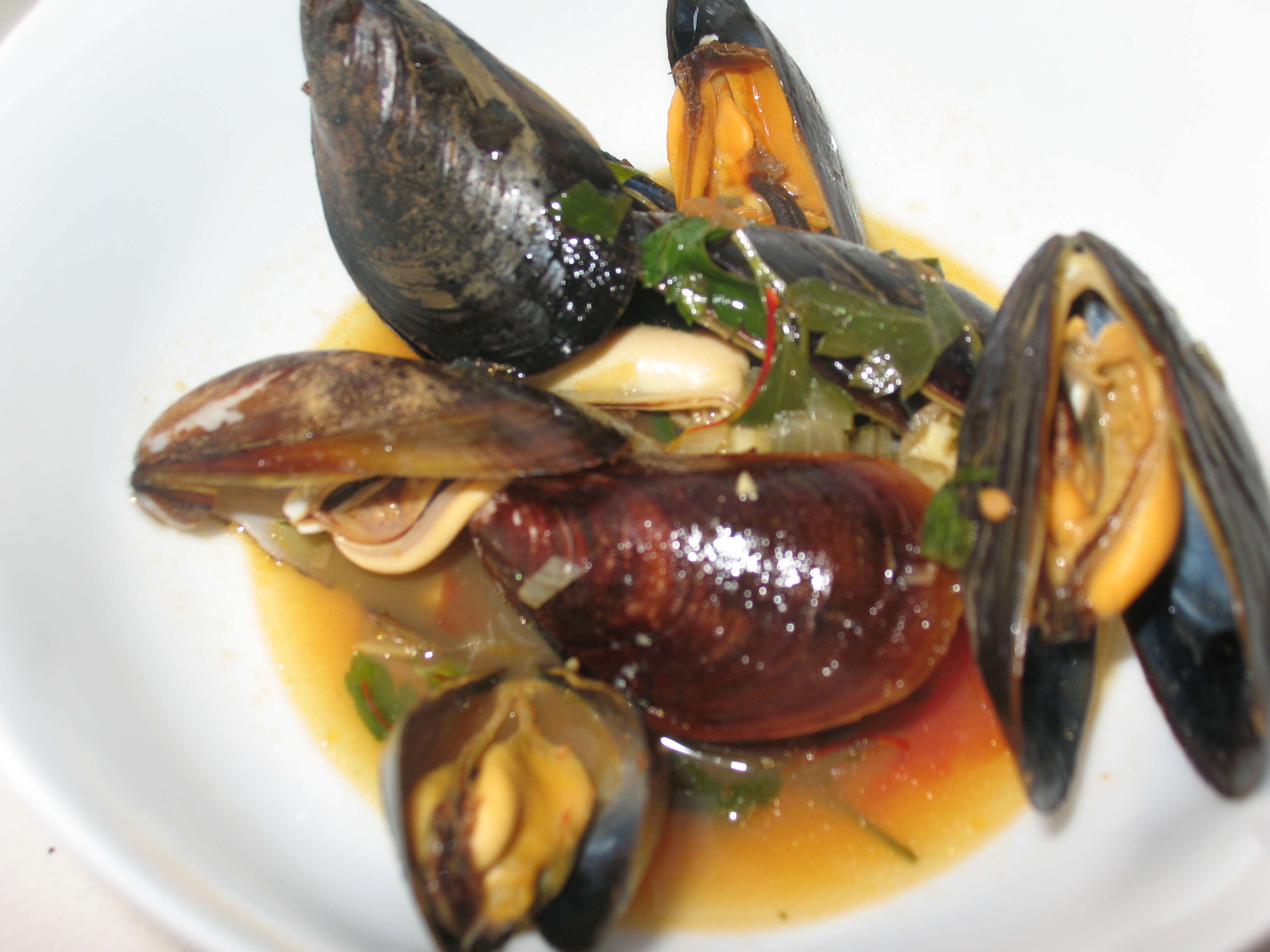 Mussels steamed in white wine and adventures with saffron